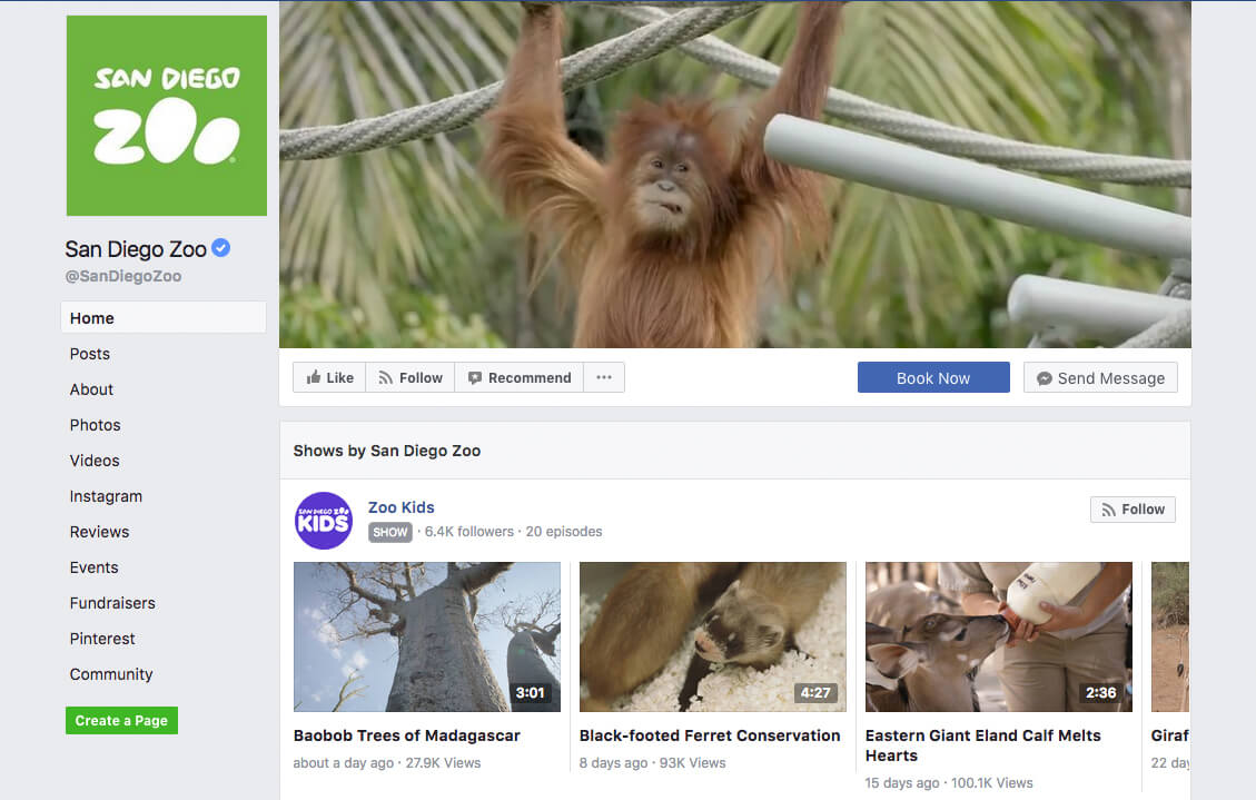 Facebook Exampe Video Covers Sand Diego Zoo